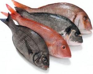Penjual Ikan Segar
